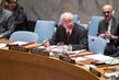 Security Council Debates Working Methods of Sanctions Committees 0.13614589