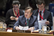 Security Council Debates Working Methods of Sanctions Committees