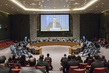 Security Council Considers Middle East Situation, Including Palestinian Question 0.5275544