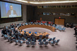 Security Council Considers Middle East Situation, Including Palestinian Question 0.5274898