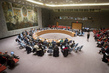 Council Debates Role of Women in Conflict Prevention and Resolution in Africa 0.09603887