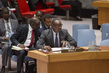 Security Council Considers Situation in Mali 1.1931572