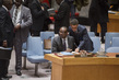 Security Council Considers Situation in Mali 1.3777393
