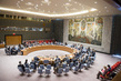 Security Council Considers Situation in Mali 1.4914465
