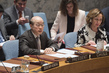 Security Council Considers Situation in Darfur 4.163711