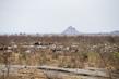 Scene from Moroyok, South Sudan 3.4782863