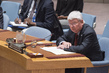 Security Council Considers Situation in Central African Republic 4.1641192