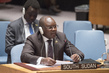 Security Council Considers Situation in South Sudan 0.23554958