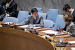 Security Council Adopts Resolution on UN Peacebuilding Architecture 1.0