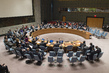 Security Council Renews Côte d'Ivoire Mission for Final Mandate, Lifts Sanctions 2.081926