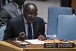 Secuirty Council Renews Côte d'Ivoire Mission for Final Mandate, Lifts Sanctions 0.44482154