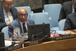 Security Council Considers Situation in Ukraine
