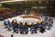 Security Council Extends Mission in Western Sahara 1.0