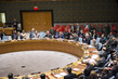 Security Council Extends Mission in Western Sahara 4.1624303