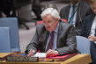 Security Council Considers Situation in Syria 4.161543