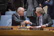 Security Council Considers Situation in Bosnia and Herzegovina 1.0
