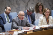 Security Council Discusses Developments in Kosovo 4.1614575