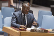 Security Council Lifts Sanctions on Liberia 1.0