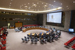 Security Council Discusses Challenges in Sahel Region