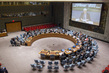 Security Council Considers Situation in Syria 0.0054949503