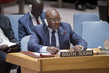 Security Council Renews Sanctions against South Sudan 0.17666219