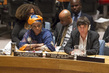 Security Council Debates Sexual Violence in Conflict Situations 0.06462607