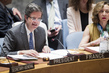 Security Council Discusses Cooperation Between UN and Regional Organizations 4.1581354