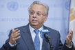 Permanent Representative of Saudi Arabia Briefs Press 0.6517792