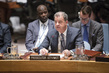 Security Council Considers Work of International Criminal Tribunals 4.1581354