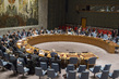 Security Council Considers Threats Caused by Terrorist Acts 4.1581354