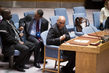 Security Council Considers Situation in Darfur, Sudan 4.1581354