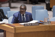Security Council Considers Situation in Guinea-Bissau 4.1560297