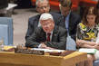 Security Council Considers Situation in Darfur, Sudan 0.36973715