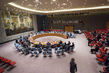 Security Council Considers Situation in Central Africa 1.0