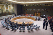 Security Council Considers Situation in Mali 1.4964433