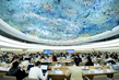 Human Rights Council Discusses Use of Sport and Olympic Ideal 7.2054887