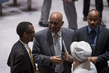 Security Council Extends Mandate of Darfur Mission 4.155122
