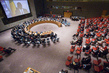 Security Council Extends Mandate of Mali Mission 1.2109184