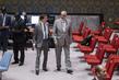Security Council Extends UNDOF Mandate 4.155122
