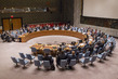 Security Council Extends Mandate of Darfur Mission