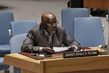 Security Council Considers Situation Concerning Democratic Republic of Congo 4.1564064