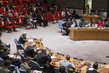 Security Council Considers Situation in Central African Republic 4.1564064