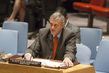Security Council Considers Situation Concerning Iraq 4.157849