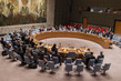 Security Council Extends UNAMI Mandate 1.0