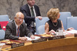 Security Council Considers Peace Consolidation in West Africa