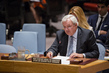 Security Council Considers Situation in Syria 0.0067120553