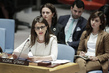 Security Council Discusses Developments in Kosovo