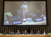 General Assembly Discusses Responsibility to Protect 0.3362609