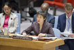Security Council Adopts Resolution on Aviation Security and Safety 0.059826754