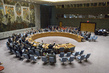 Security Council Urges Signature, Ratification of Nuclear-Test-Ban Treaty 1.632495
